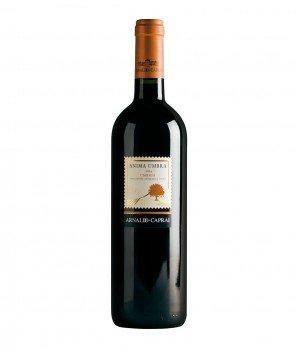 Anima Umbra IGT 750ml – Arnaldo Caprai – Червено, Сухо Негазирано Вино